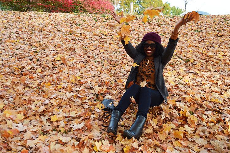 Fall-Leaves-Fun-