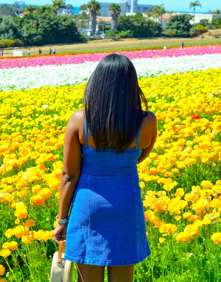 What-to-Wear-to-the-Flower-Fields-in-Carlsbad-CA-3